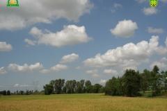 nagrafarm-image6