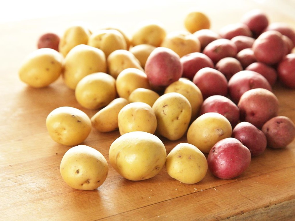 nagrafarm-potatoes