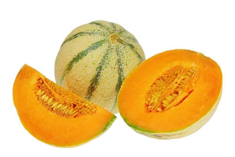 nagra-farm-melons